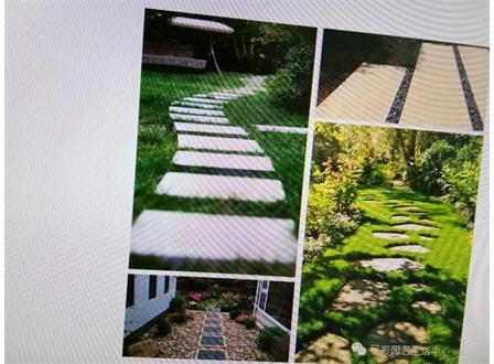 草坪踏步石